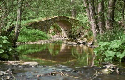 Idyllisches Kemnitzbachtak mit Schafbrücke Geilsdorf im Vogtland