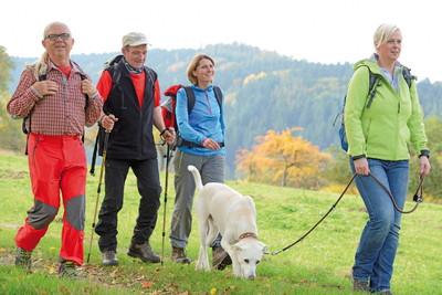 Neckarsteig, Eberbach-Wandergruppe Breitenstein