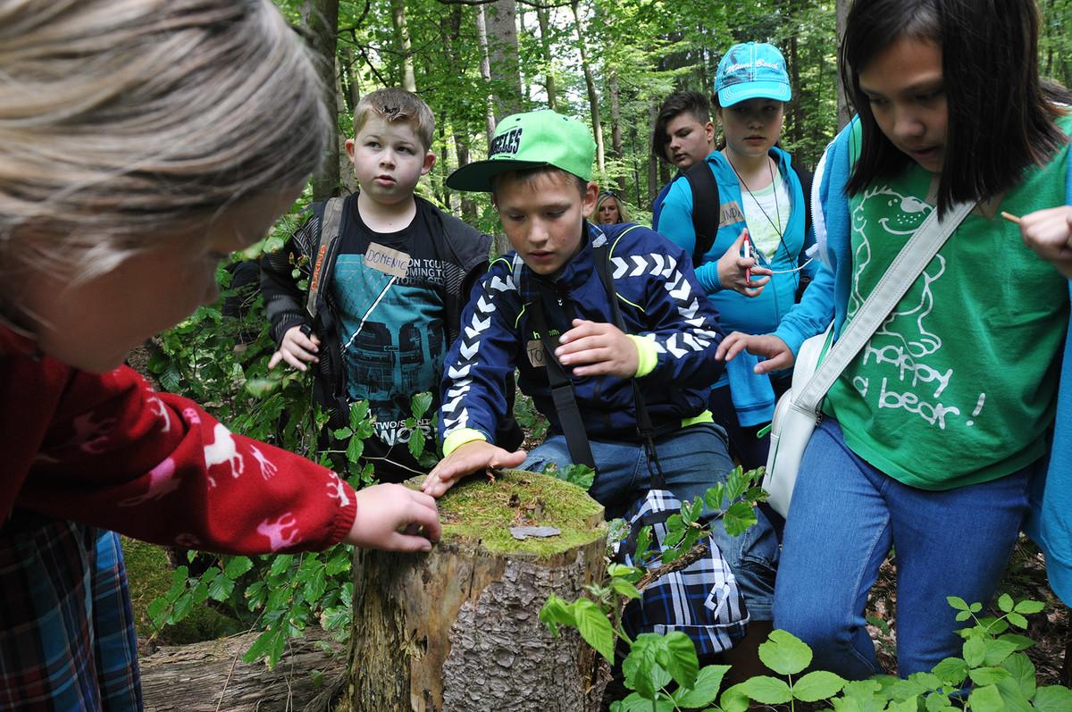Gemeinsam die Natur entdecken