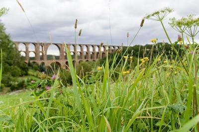 Die Göltzschtalbrücke, die größte Ziegelsteinbrücke der Welt.
