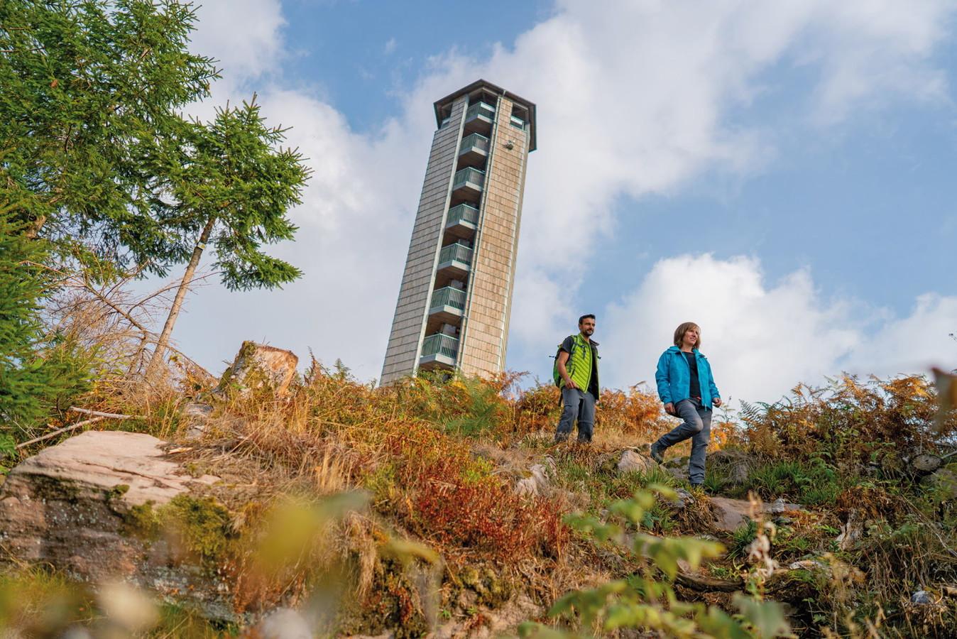Anspruchsvolles Wandern auf dem Maisacher Turmsteig am Buchkopfturm Oppenau.