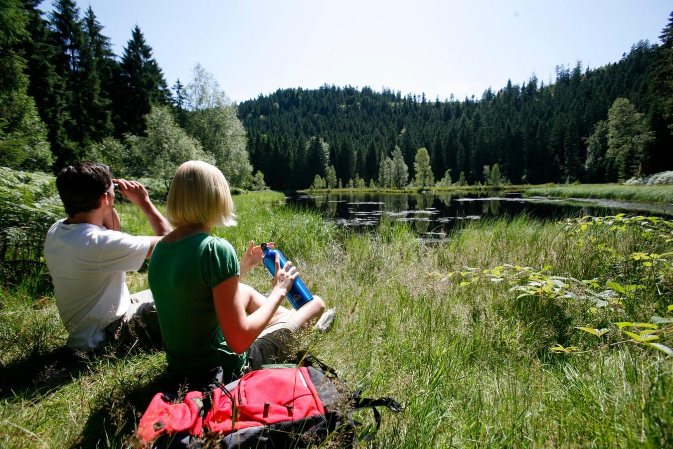 Ein traumhafter Ort für eine Ruhepause, der Buhlbachsee in Baiersbronn.