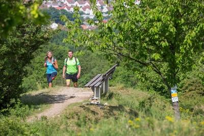 Rastplatz Wanderweg Zeugenbergrunde